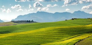 Investing in Conservation Easements