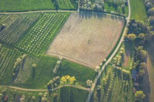AcreTrader Review My Investment in Cash-Flowing Farmland